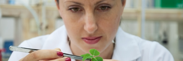 woman scientist examines green plant in lab
